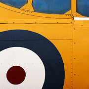 Bulls Photo Prints - Vintage Airplane Abstract Design Print by Carol Leigh