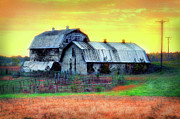 Cards Vintage Framed Prints - Vintage Barns North Carolina II Framed Print by Dan Carmichael