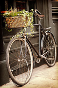 Basket Posters - Vintage bicycle Poster by Jane Rix