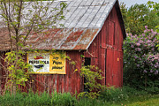 Farm Art Photos - Vintage by Bill  Wakeley
