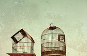 Bird Cages Posters - Vintage Bird Cages Poster by Brooke Ryan