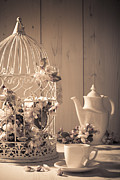 Birdcage Photos - Vintage Birdcage by Christopher and Amanda Elwell