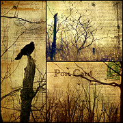 Nature Collage Posters - Vintage Birds Collage Poster by Gothicolors And Crows