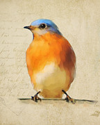 Bluebird Painting Metal Prints - Vintage Bluebird Metal Print by Jai Johnson