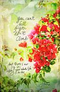 Climbing Mixed Media Posters - Vintage Bougainvillea with inspirational quote Poster by Marianne Campolongo
