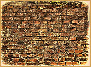 Don Cole - Vintage Brick Wall