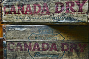 Dry Wood Prints - Vintage Canada Dry Print by Paul Ward