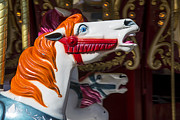 Saddle Photos - Vintage carrousel horse by Garry Gay