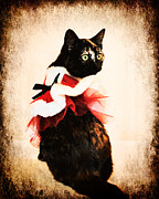 Tortoiseshell Prints - Vintage Christmas Kitten Print by Jai Johnson