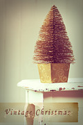 Bottle Brush Metal Prints - Vintage Christmas Treee Metal Print by Christopher and Amanda Elwell