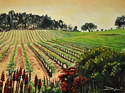 Pinot Noir Originals - Vintage by David Larsen