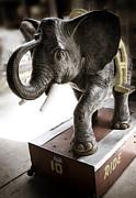 Marilyn Hunt - Vintage Elephant Ride
