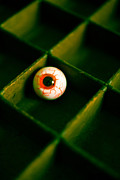 Depth Of Field Photos - Vintage fake eyeball by Edward Fielding
