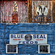 Feeds Photo Prints - Vintage Farm Signs Print by Sabine Jacobs
