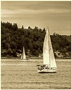 South Puget Sound Prints - Vintage Grace Print by Chris Anderson