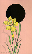 Easter Flowers Drawings Posters - Vintage Greeting. Yellow daffodil flower.  Poster by Pierpont Bay Archives