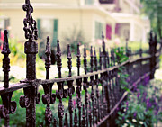 Charming Cottage Posters - Vintage Iron Fence in Summer Garden Poster by Elle Moss