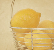 Lemons Photo Framed Prints - Vintage Lemons Still Life Framed Print by Kim Hojnacki