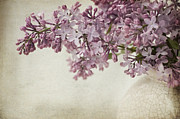 Digitally Altered Floral Posters - Vintage Lilac Poster by Dolly Genannt