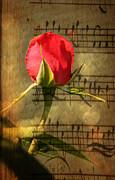 Judy Palkimas - Vintage Love Story...