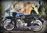 Karyn Robinson - Vintage Motocycle