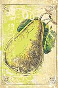 Vintage Pear Print Print by Anahi DeCanio