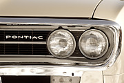 James Bo Insogna Prints - Vintage Pontiac Firebird 1967 Close Up Print by James Bo Insogna