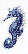 Seahorse Digital Art Metal Prints - Vintage Seahorse-blue-right Metal Print by Jane Schnetlage