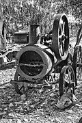 Hall Of Fame Posters - Vintage Steam Tractor Black and White Poster by Douglas Barnard