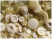 Sepia And Cream Posters - Vintage White Buttons Poster by Carol Groenen