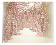 Snowscape Digital Art - Vintage Winter Path by Mary Timman