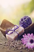 Mythja  Photography - violet dayspa nature set