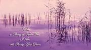 Jenny Rainbow - Violet Fire Mantra Words