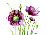 Ann Painting Prints - Violet Poppies Print by Annie Troe