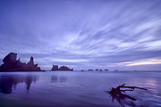 Seascape Greeting Cards Prints - Violet Vista Print by Jon Glaser