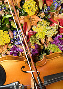 Strings Digital Art Posters - Violin and Flowers Poster by Jodi Jacobson