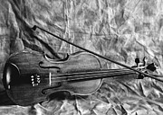 Cherie Haines - Violin in Black and White