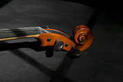 Concerto Art - Violin in shadow by Mark McKinney