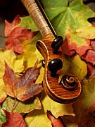 Red Tiger Prints - Violin Scroll with Fall Maple Leaves Print by Anna Lisa Yoder