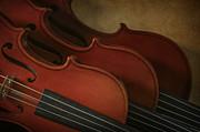 Violins Print by David and Carol Kelly