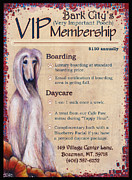 Afghan Hound Mixed Media - VIP Membership by Amy Norden