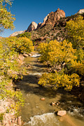 Geobob Prints - Virgin River in the Autumn in Zion National Park Utah Print by Robert Ford