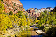 Zion National Park Framed Prints - Virgin River - Zion Framed Print by Jon Berghoff
