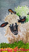 Ovine Framed Prints - Virgin Wool Framed Print by Mary Ellen  Mueller-Legault
