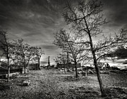 Virginia Cemetary Photo Posters - Virginia City Cemetary 2 Poster by Dianne Phelps