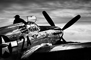 Tuskegee Airmen Prints - Vision of the Past - Tuskegee Airmen P-51 Mustang Print by Adam Schallau