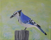 Bluejay Painting Metal Prints - Visiting BlueJay Metal Print by Lisa MacDonald