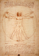 Sketch Posters - Vitruvian Man Poster by Bill Cannon