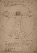 Da Vinci Mixed Media - Vitruvian Man  by War Is Hell Store