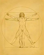 William  Paul Marlette Framed Prints - Vitruvian Framed Print by William  Paul Marlette